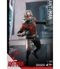 FIGURA HOTTOYS MARVEL ANT MAN 30 CMS
